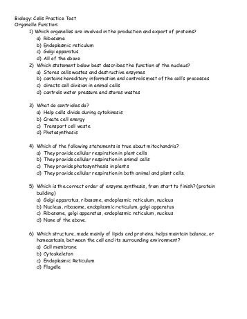 Animal Cell Structure Worksheet
