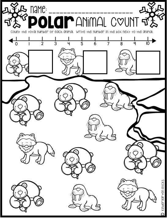 Polar Animal Math and Literacy Worksheets and Printables for