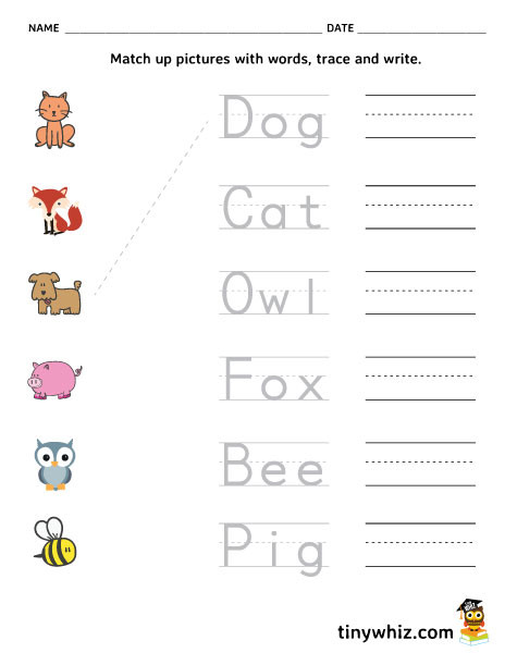 Matching Numbers to Words Worksheets