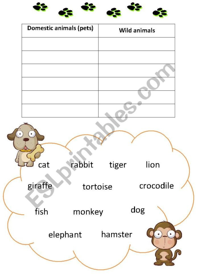 Simple Animals Worksheet Answers