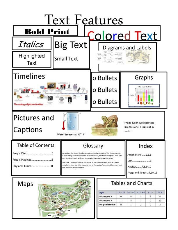 Using Text Features Worksheet